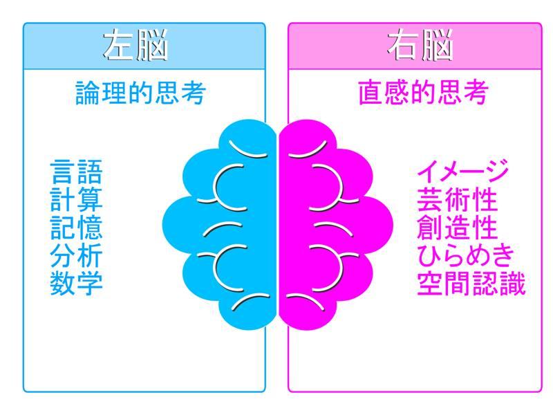 左脳と右脳の特性を説明した図