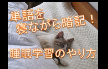 睡眠学習の矢r方、単語の暗記と寝ている猫の画像